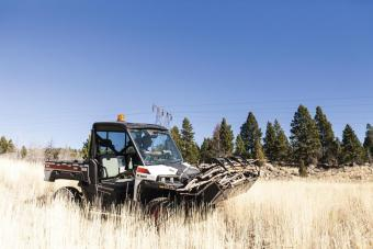 Bobcat 3650 utility vehicle with grapple attachment carries a load of firewood.