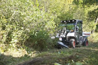 5600 Toolcat utility work machine using Bobcat Brushcat rotary cutter attachment to clear saplings in an overgrown area.