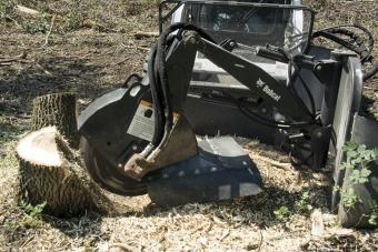 Bobcat stump grinder attachment is used to efficiently remove multiple tree stumps.