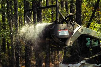 Bobcat forestry cutter attachment easily cuts through a tree in a wooded area.